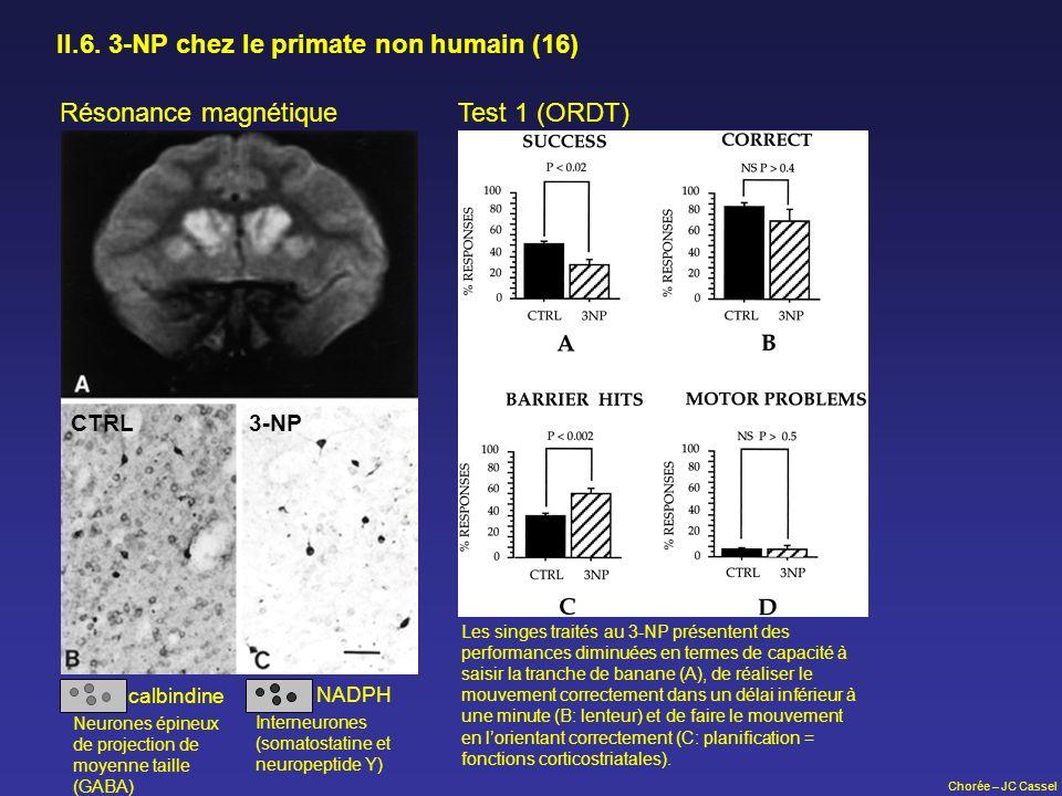 II.6. 3-NP chez le primate non humain (16)
