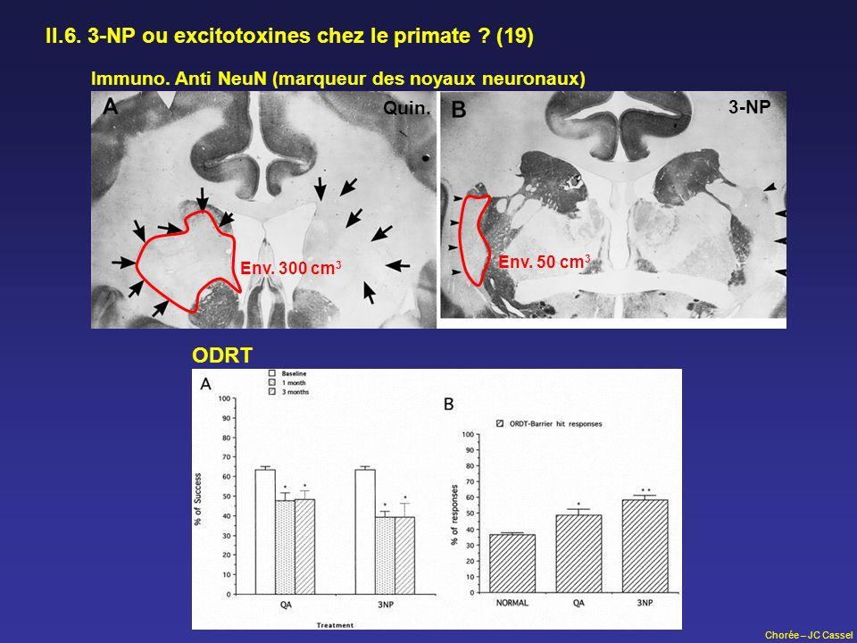 II.6. 3-NP ou excitotoxines chez le primate (19)