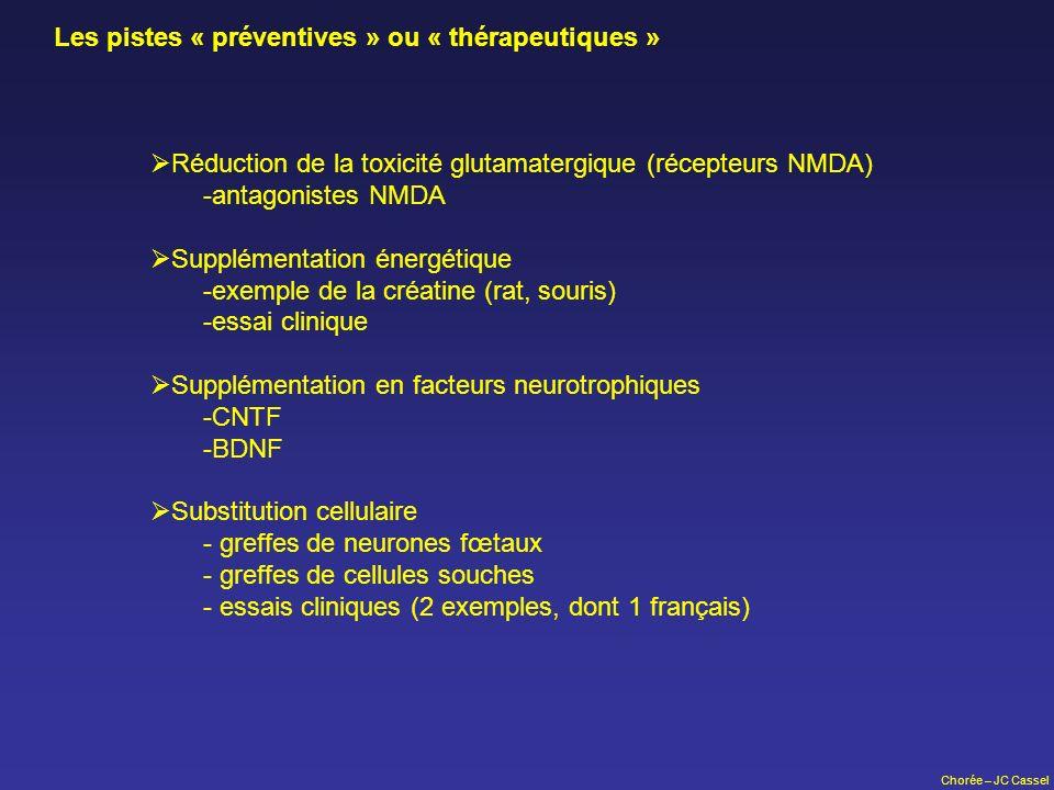 Les pistes « préventives » ou « thérapeutiques »