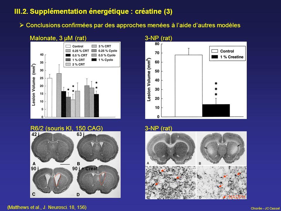 III.2. Supplémentation énergétique : créatine (3)