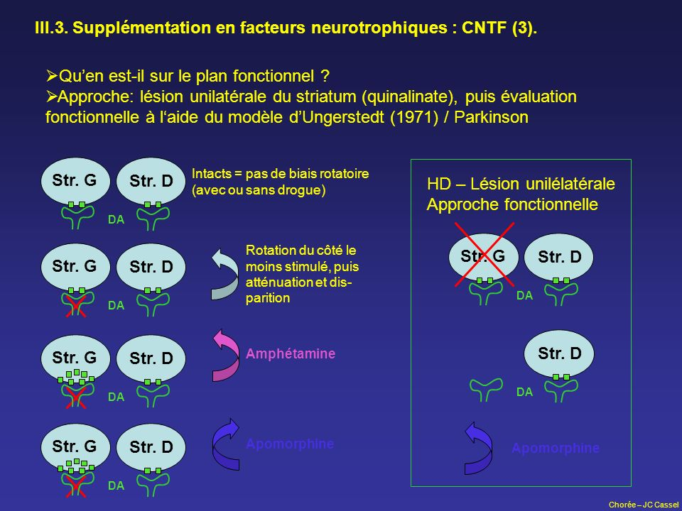 III.3. Supplémentation en facteurs neurotrophiques : CNTF (3).