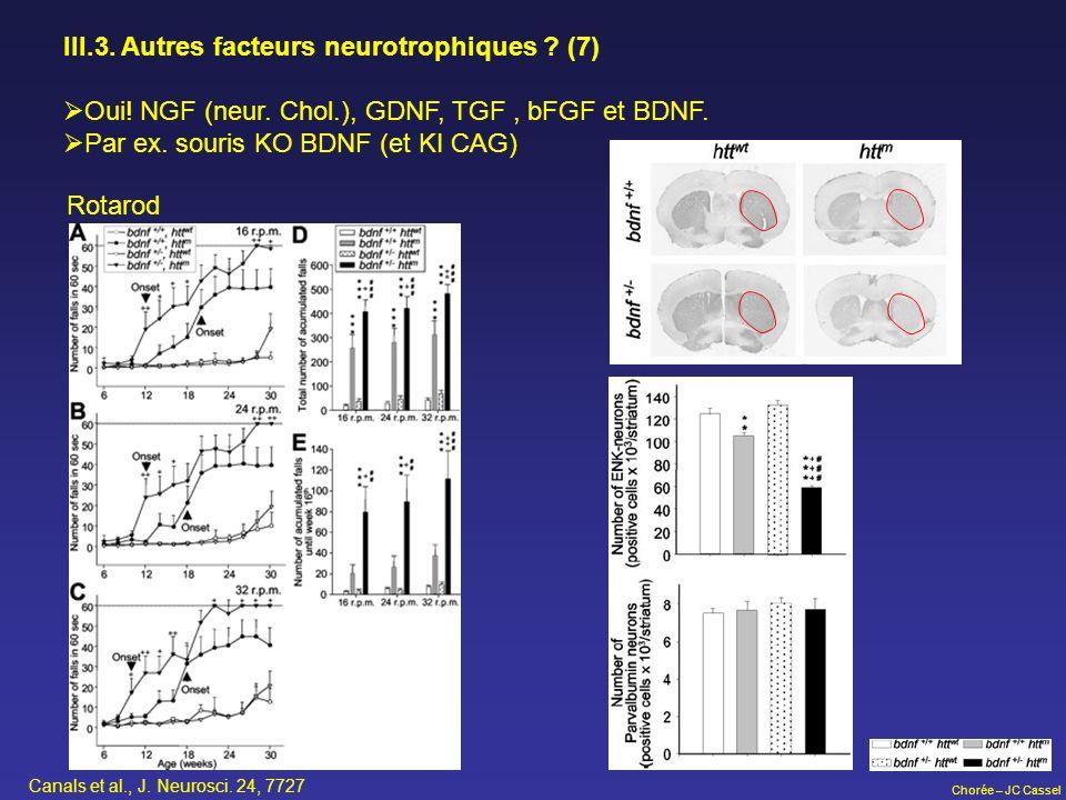 III.3. Autres facteurs neurotrophiques (7)