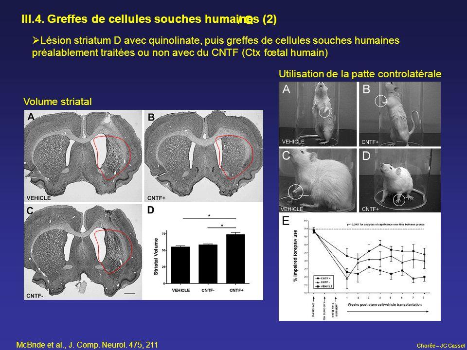 III.4. Greffes de cellules souches humaines (2) / Q
