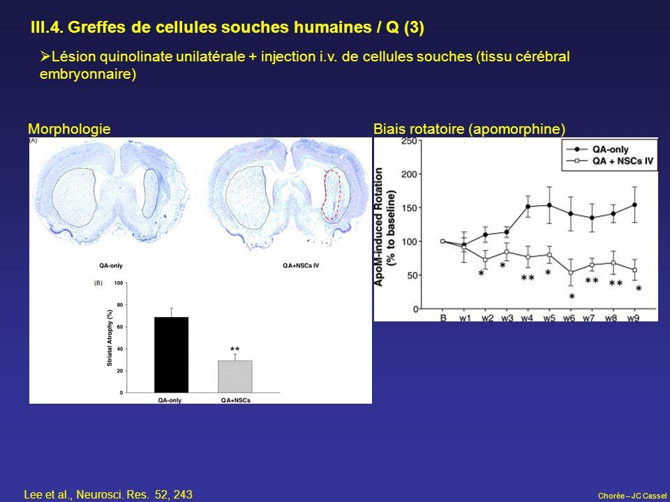 III.4. Greffes de cellules souches humaines / Q (3)