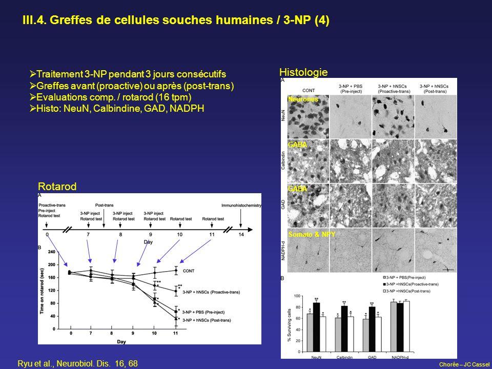 III.4. Greffes de cellules souches humaines / 3-NP (4)