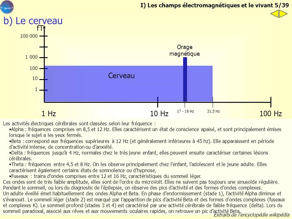 b) Le cerveau fT Cerveau 1 Hz 100 Hz 10 Hz