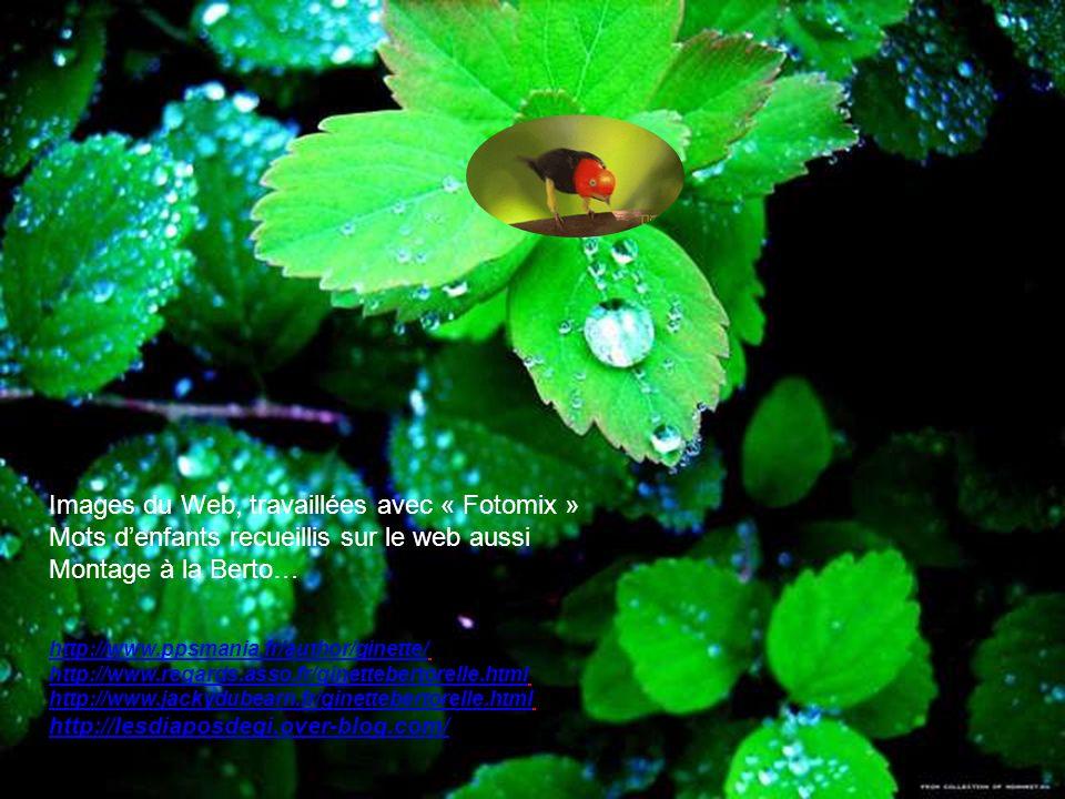 Images du Web, travaillées avec « Fotomix »