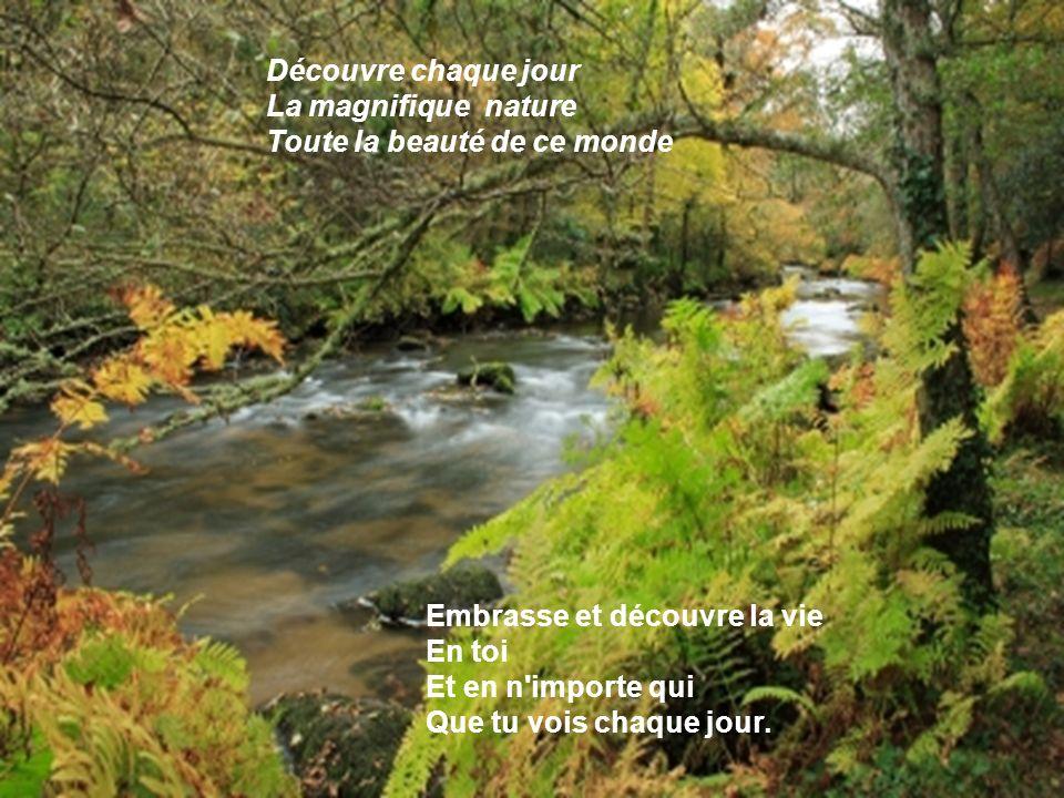 Découvre chaque jour La magnifique nature. Toute la beauté de ce monde. Embrasse et découvre la vie.