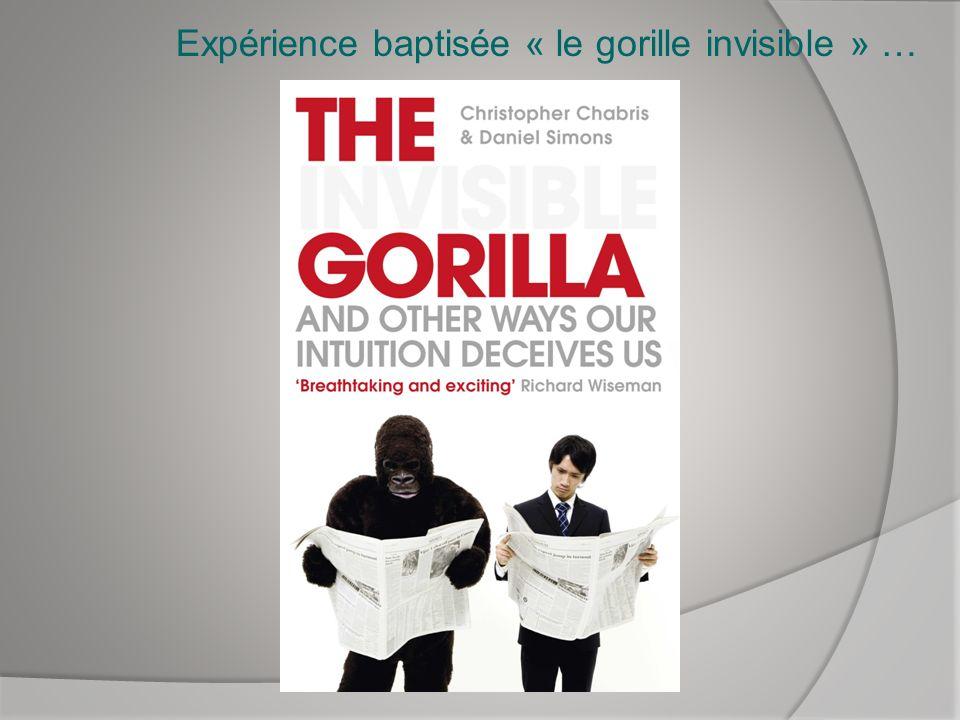 Expérience baptisée « le gorille invisible » …