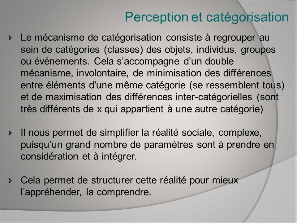 Perception et catégorisation