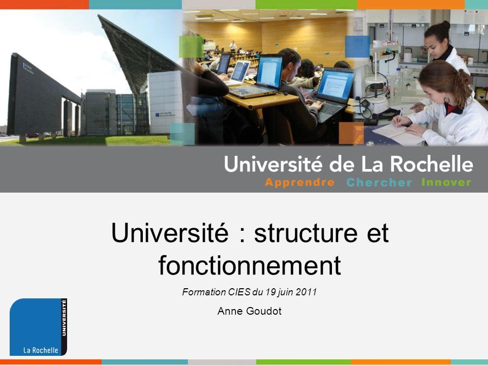 Université : structure et fonctionnement