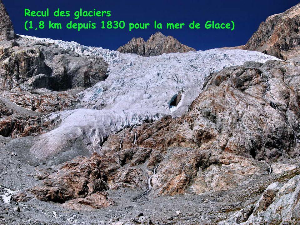 Recul des glaciers (1,8 km depuis 1830 pour la mer de Glace)