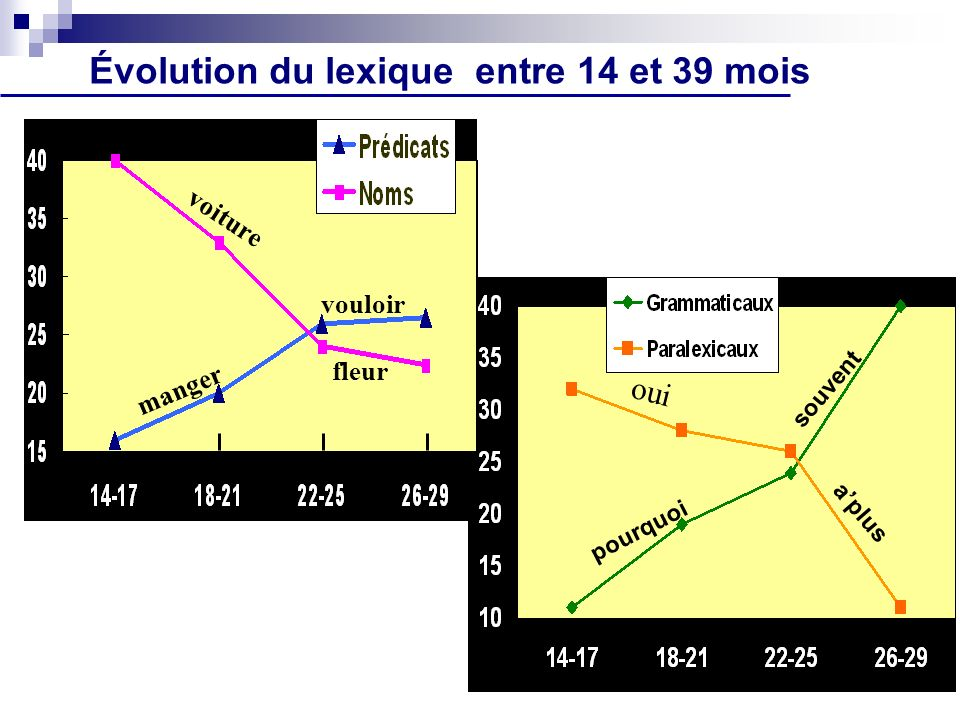 Évolution du lexique entre 14 et 39 mois