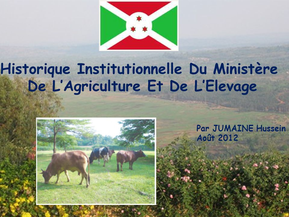 Historique Institutionnelle Du Ministère