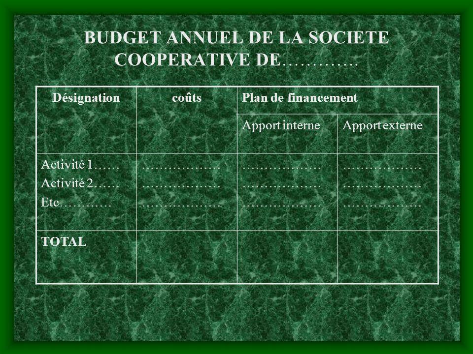 BUDGET ANNUEL DE LA SOCIETE COOPERATIVE DE………….