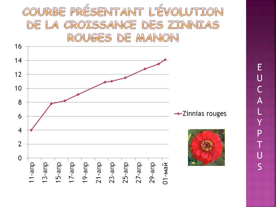 Courbe présentant l'évolution de la croissance des zinnias rouges de Manon