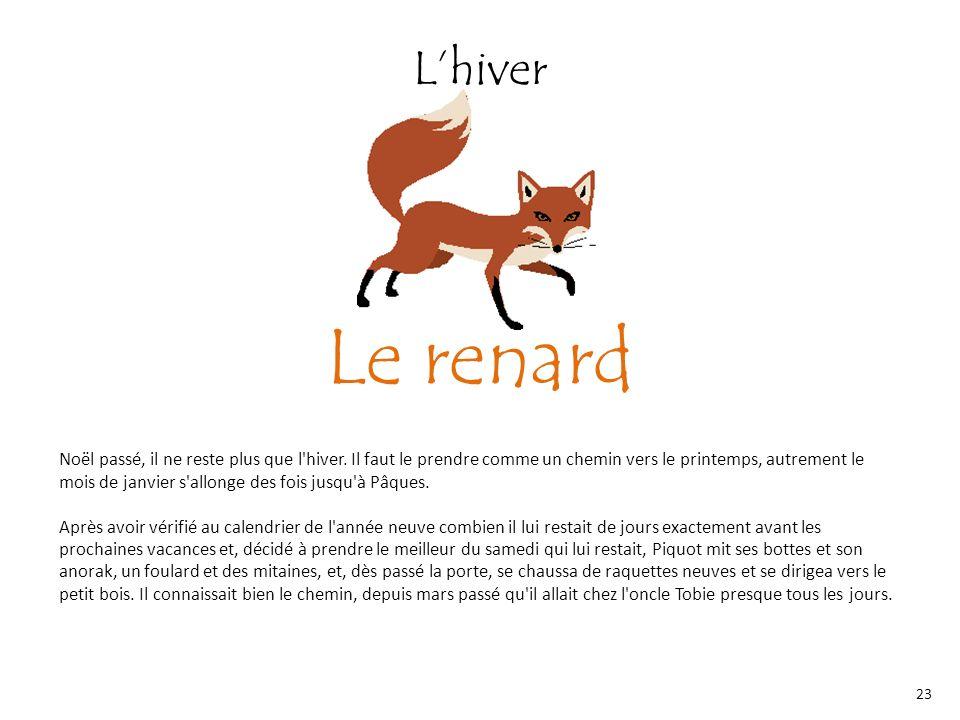L'hiver Le renard.