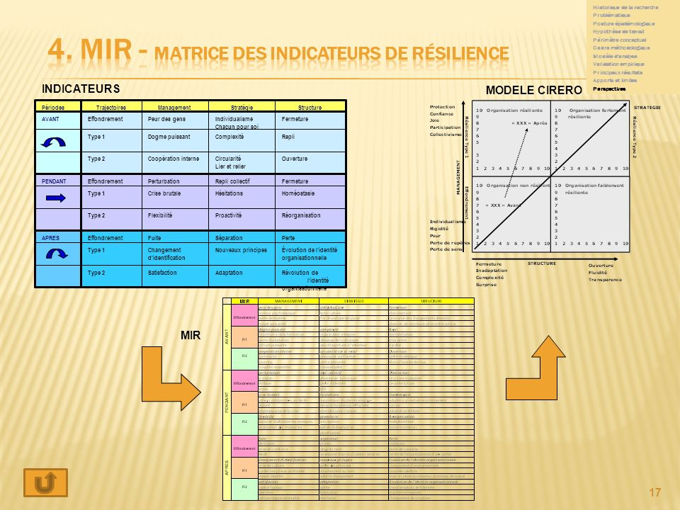 4. MIR - matrice des indicateurs de résilience