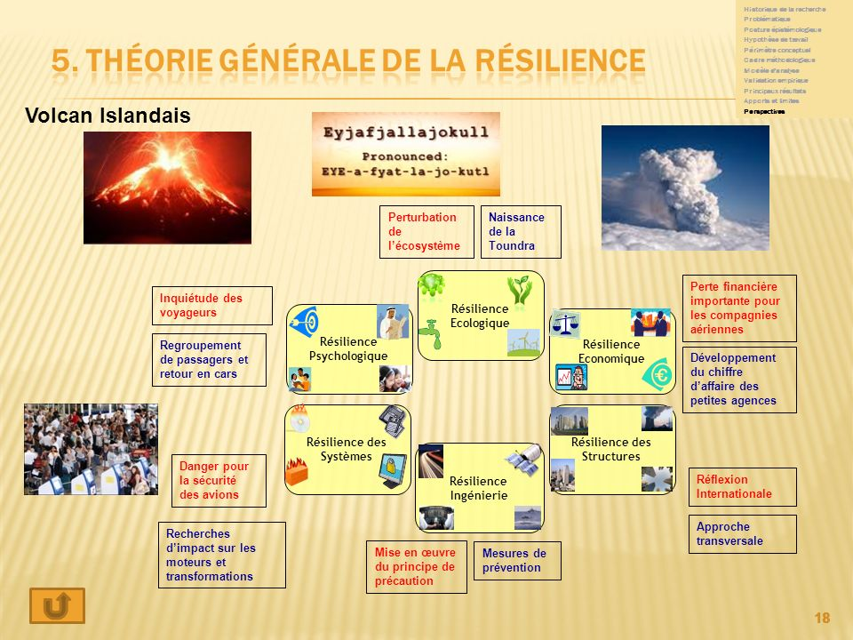 5. théorie générale de la résilience