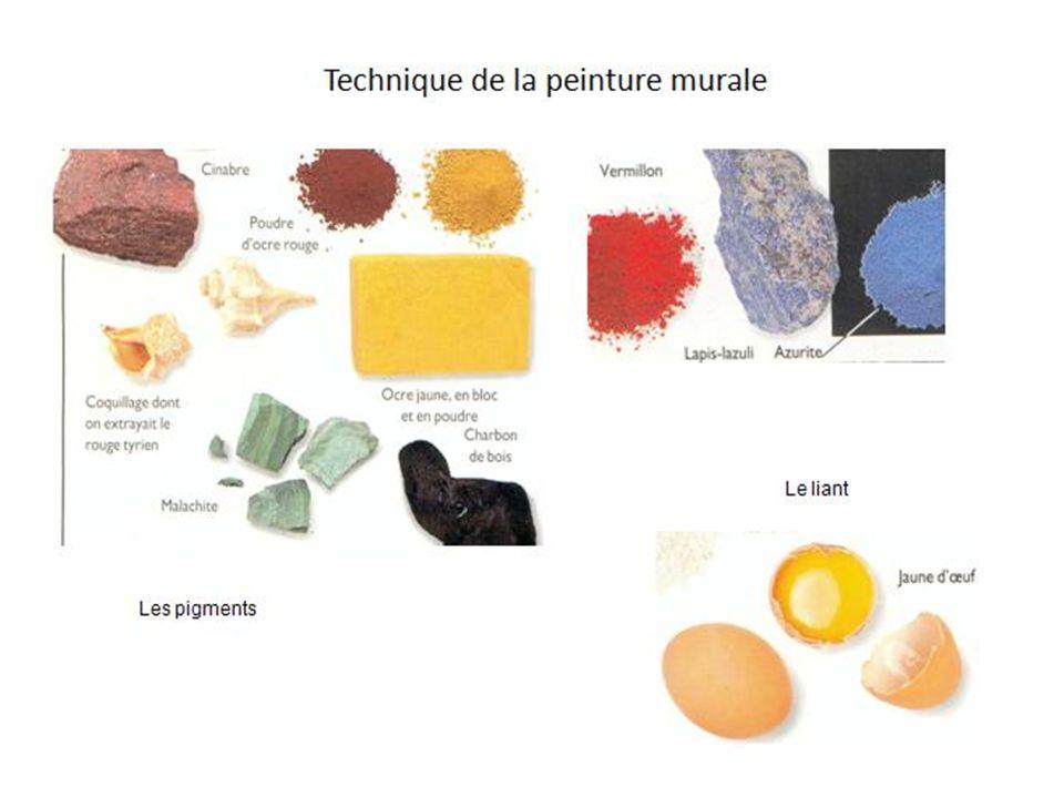 Insérer la diapo sur les pigments