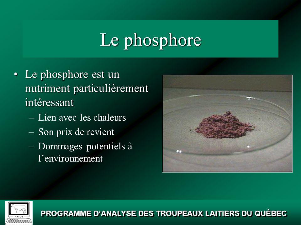 Le phosphore Le phosphore est un nutriment particulièrement intéressant. Lien avec les chaleurs. Son prix de revient.