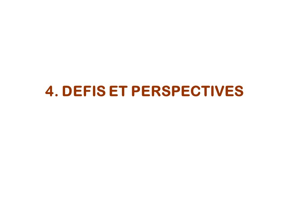4. DEFIS ET PERSPECTIVES