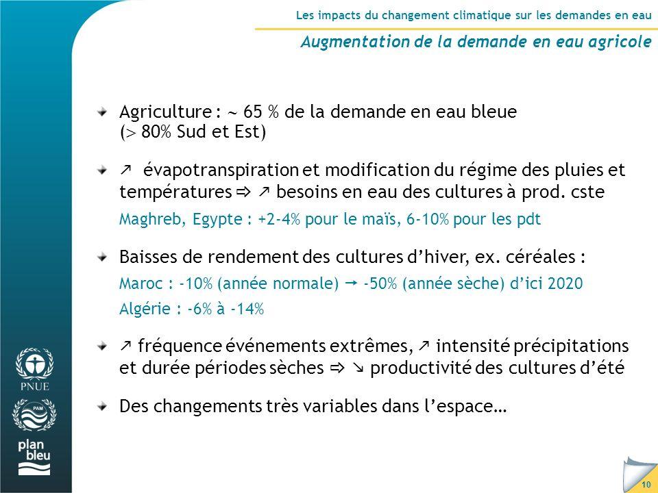 Agriculture :  65 % de la demande en eau bleue ( 80% Sud et Est)