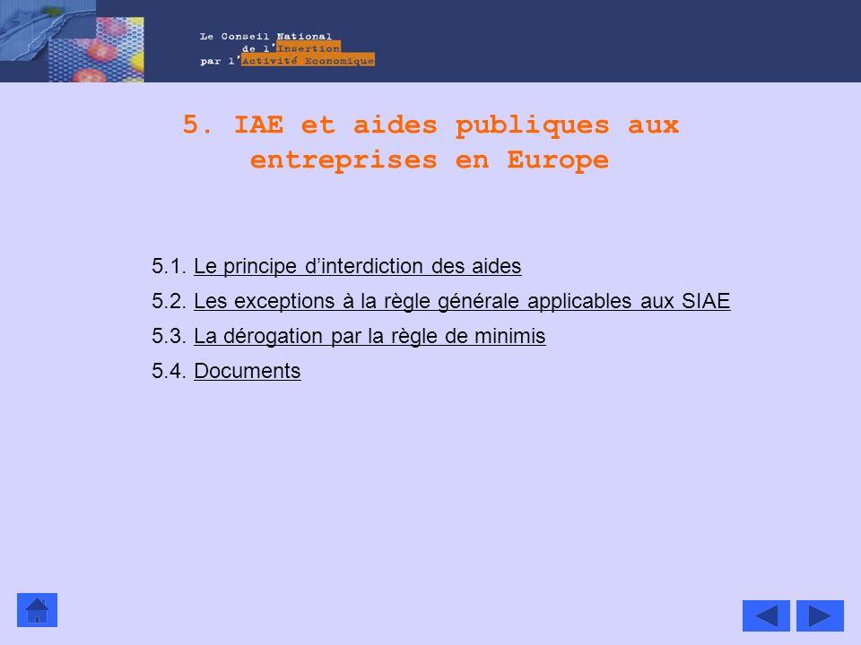 5. IAE et aides publiques aux entreprises en Europe