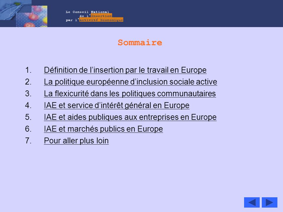 Sommaire Définition de l'insertion par le travail en Europe