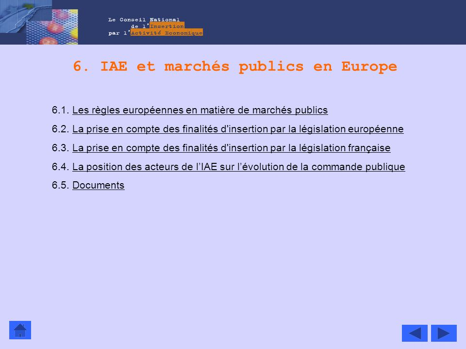 6. IAE et marchés publics en Europe