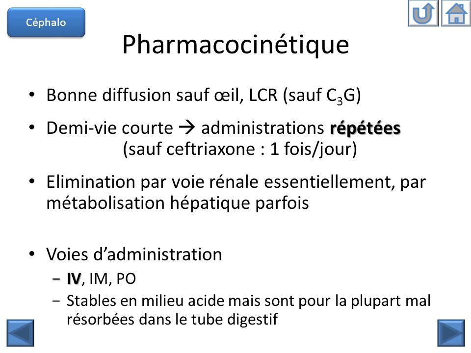 Pharmacocinétique Bonne diffusion sauf œil, LCR (sauf C3G)