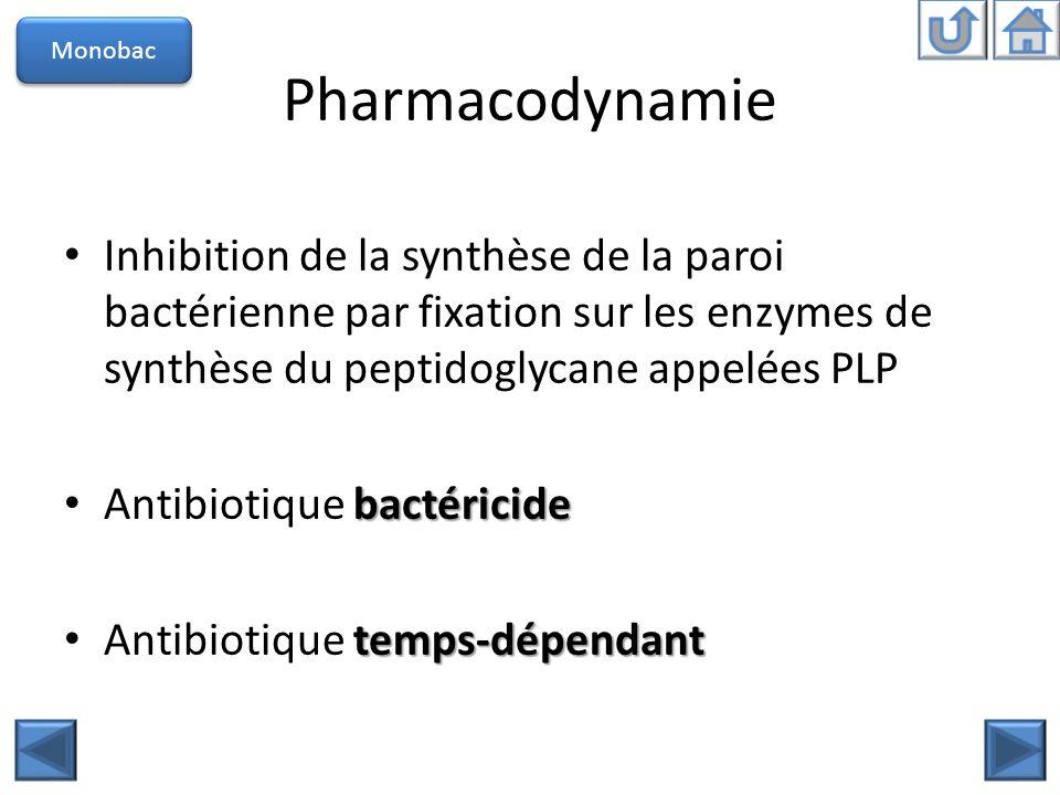 Monobac Pharmacodynamie. Inhibition de la synthèse de la paroi bactérienne par fixation sur les enzymes de synthèse du peptidoglycane appelées PLP.