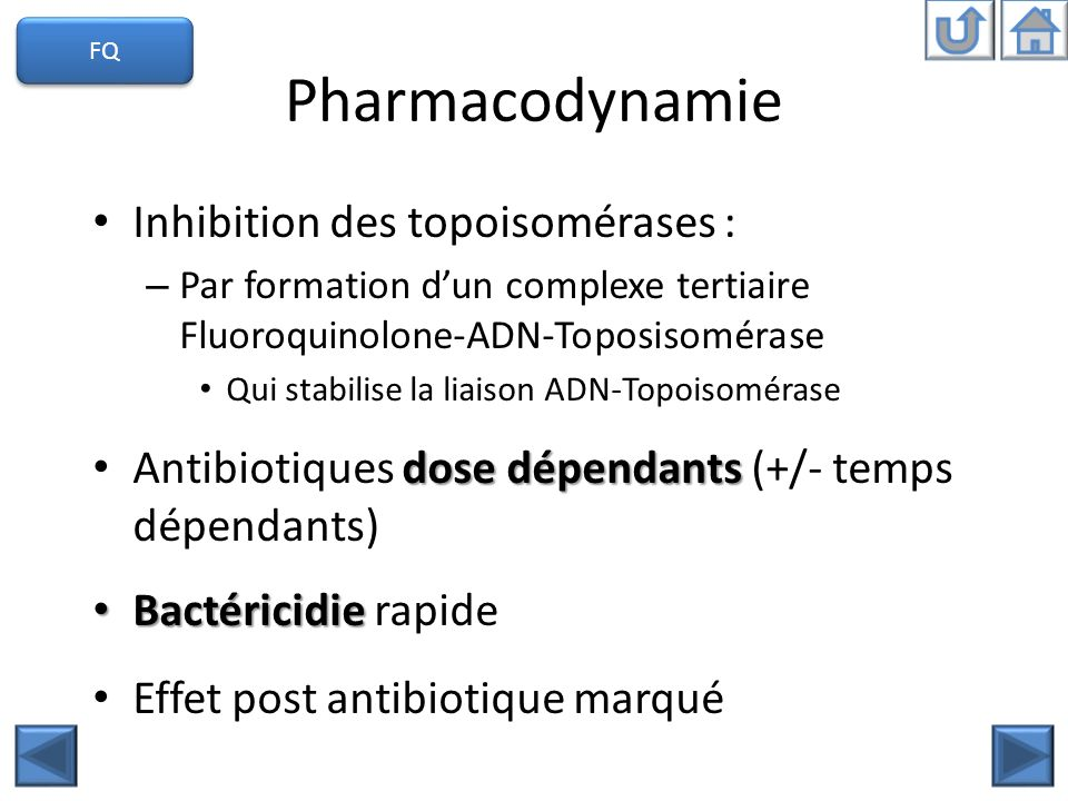 Pharmacodynamie Inhibition des topoisomérases :