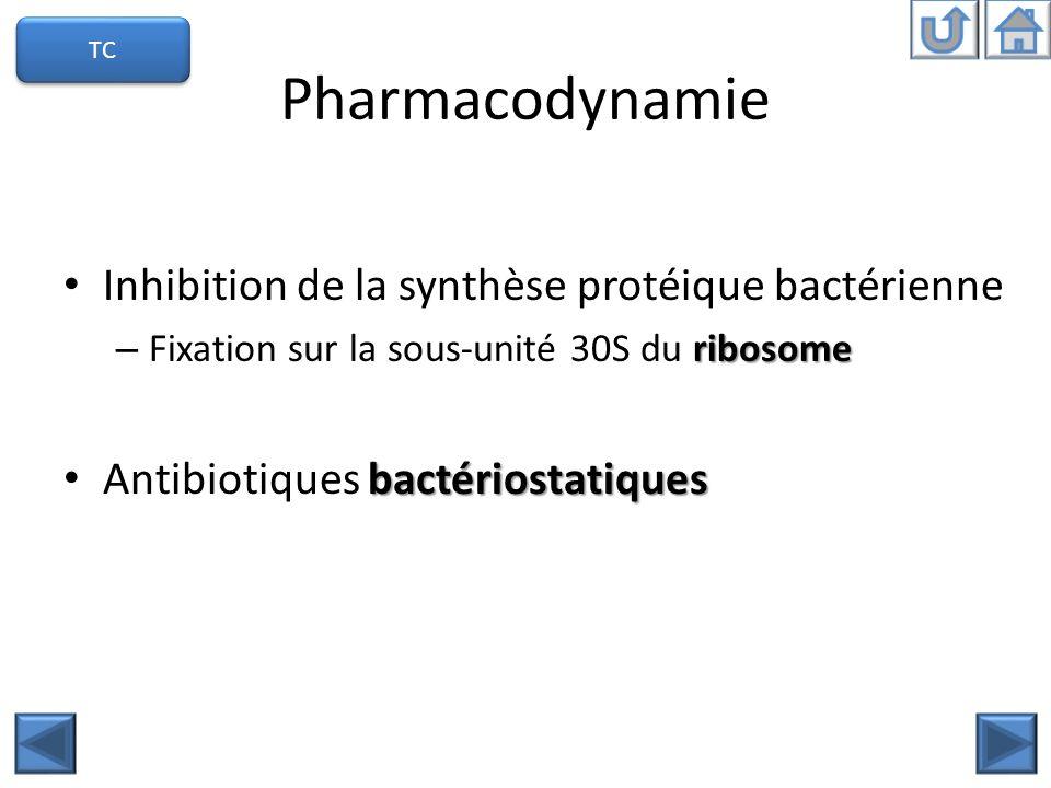 Pharmacodynamie Inhibition de la synthèse protéique bactérienne