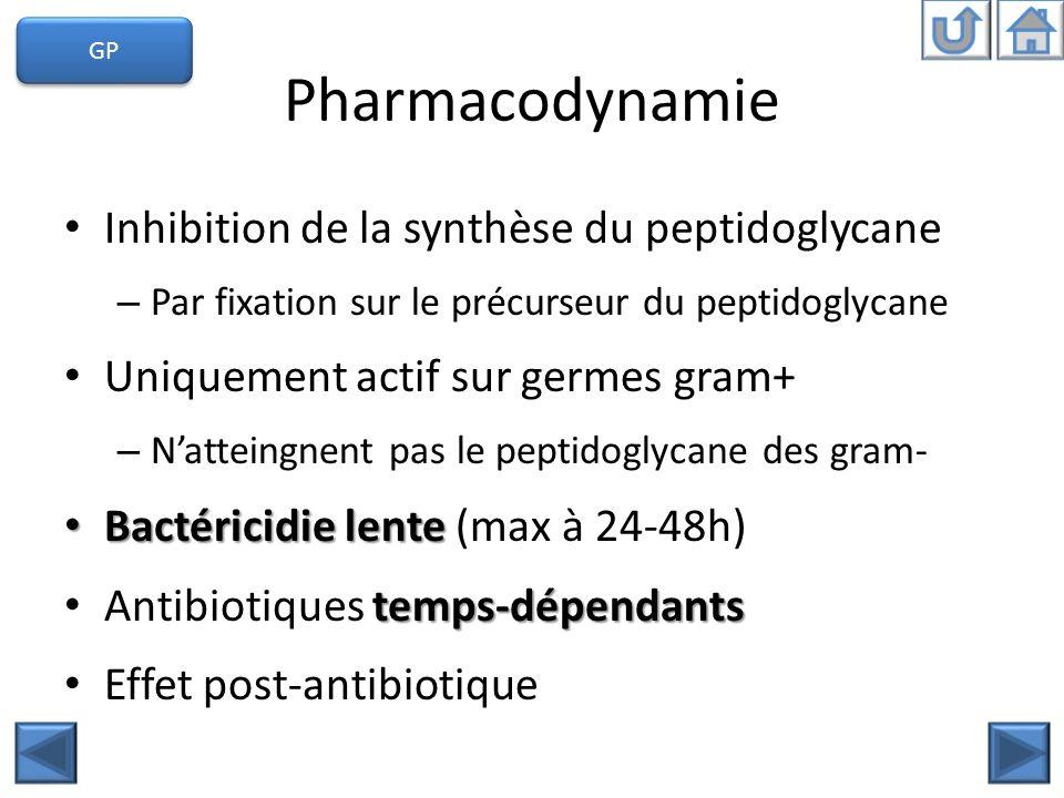 Pharmacodynamie Inhibition de la synthèse du peptidoglycane