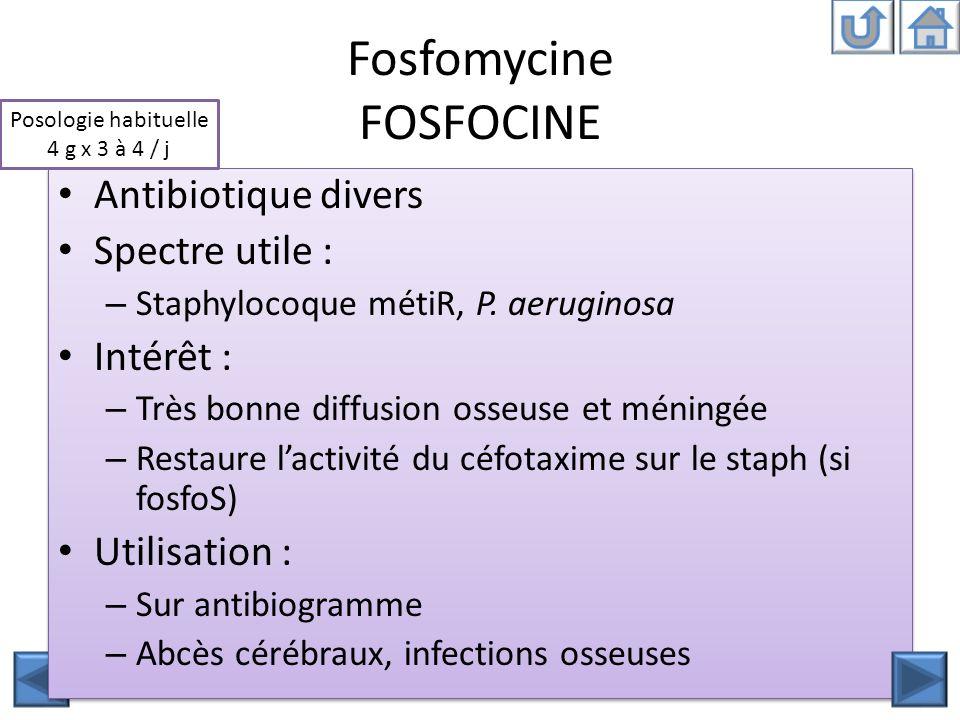 Fosfomycine FOSFOCINE