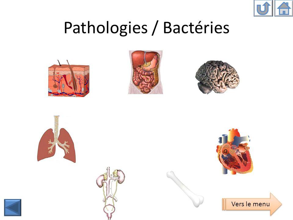 Pathologies / Bactéries