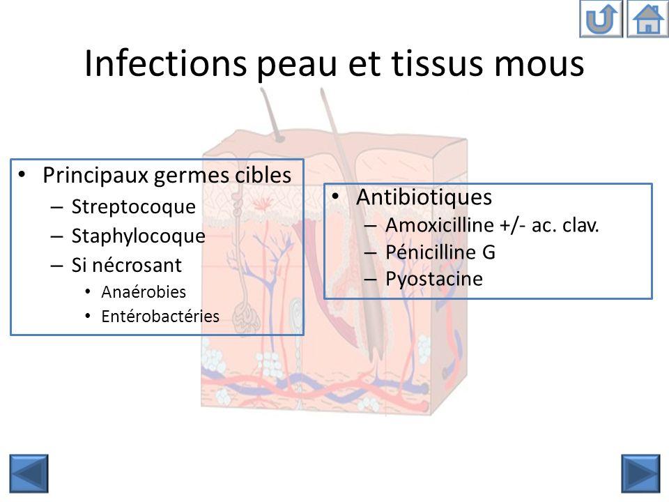 Infections peau et tissus mous