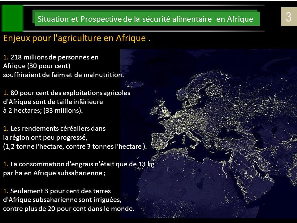 3 Enjeux pour l agriculture en Afrique .