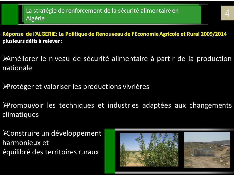 La stratégie de renforcement de la sécurité alimentaire en Algérie