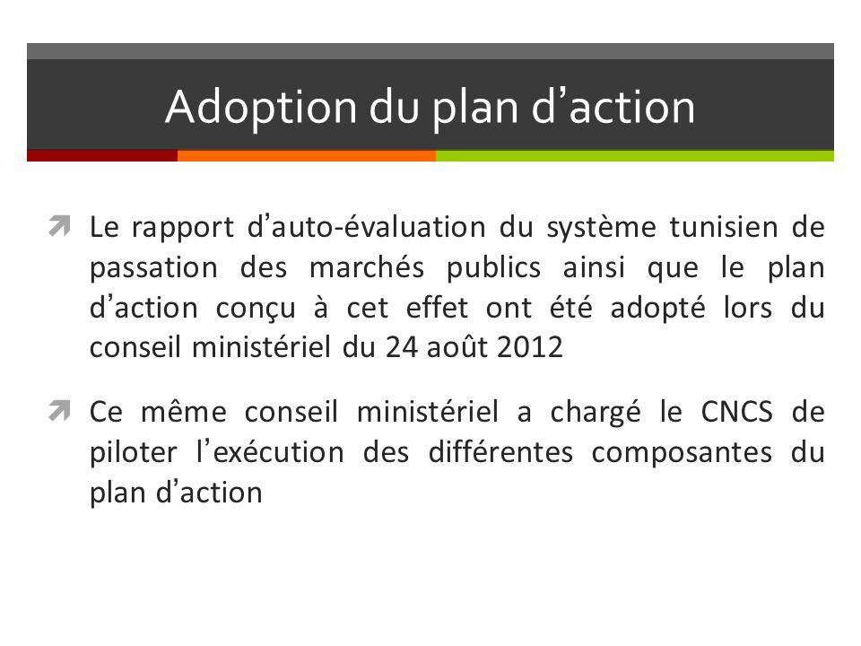 Adoption du plan d'action