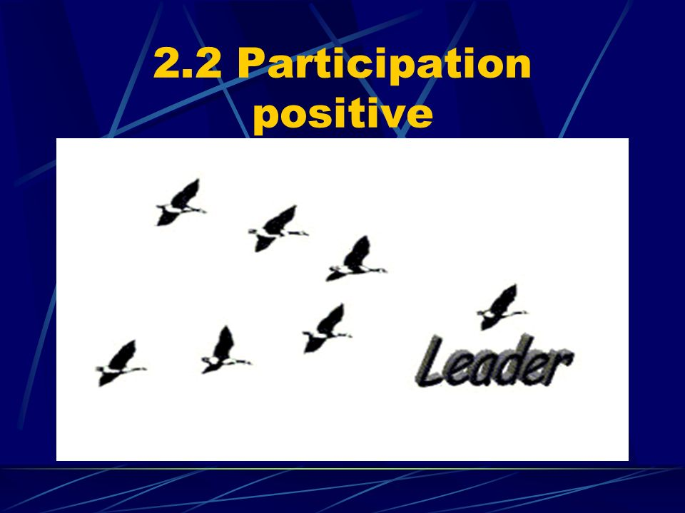 2.2 Participation positive