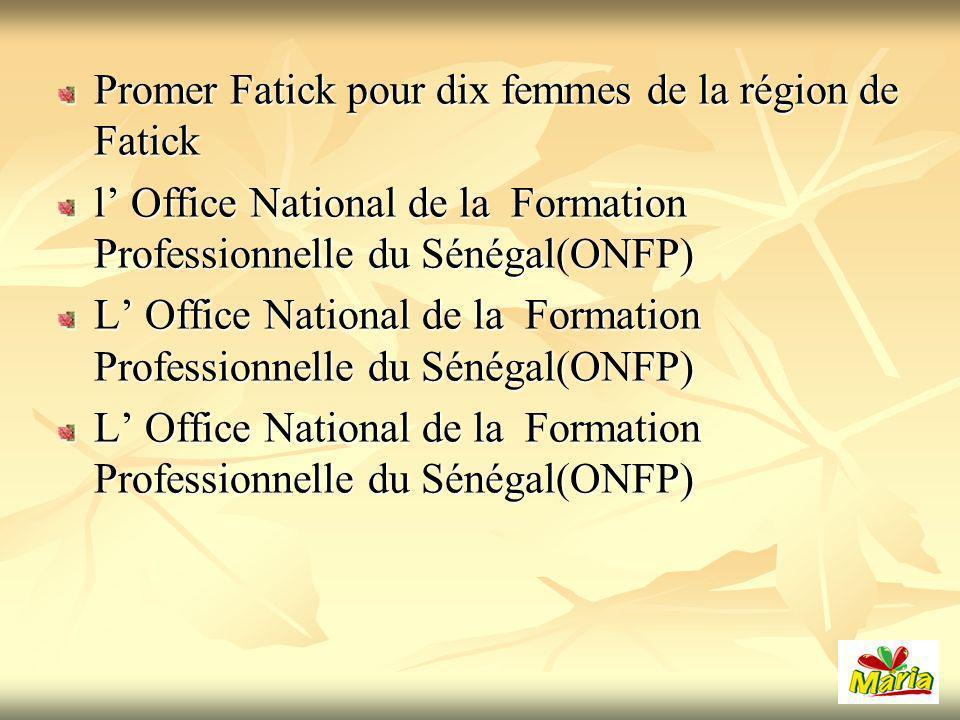 Promer Fatick pour dix femmes de la région de Fatick