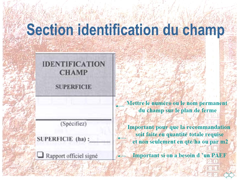 Section identification du champ