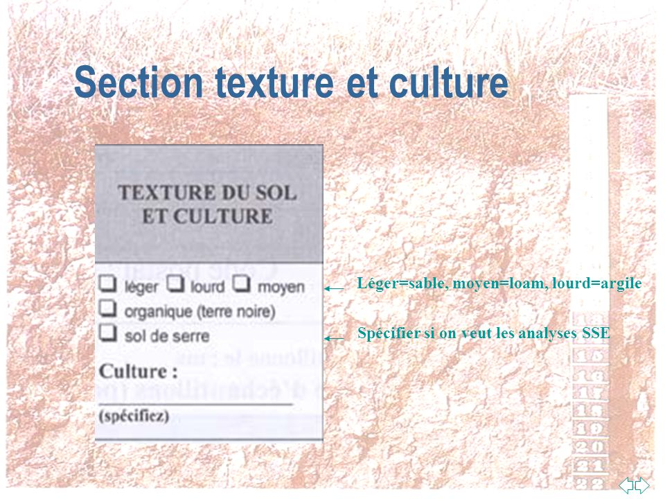 Section texture et culture