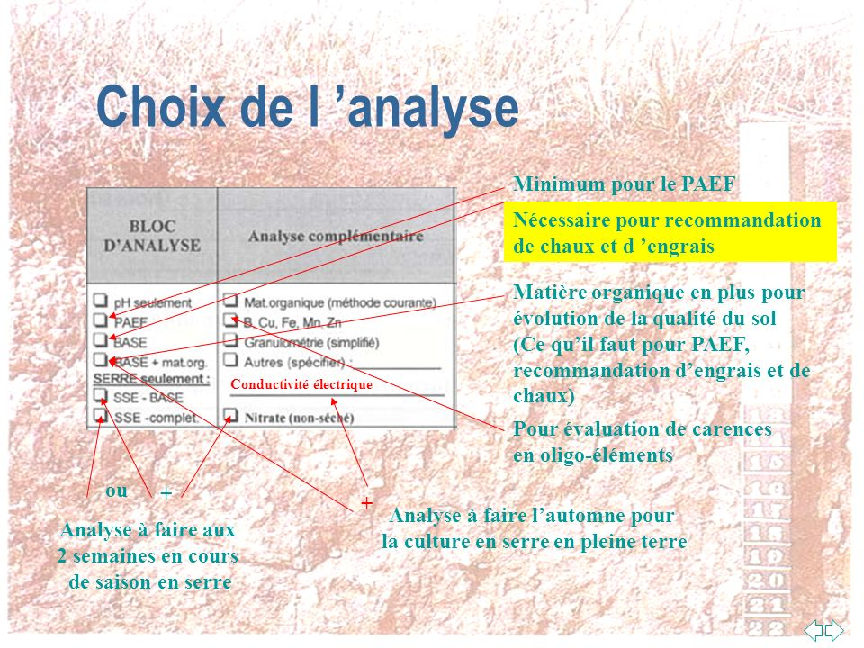 Choix de l 'analyse Minimum pour le PAEF