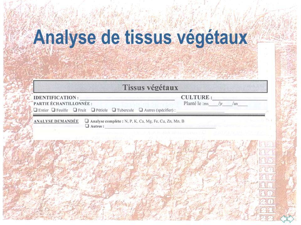 Analyse de tissus végétaux
