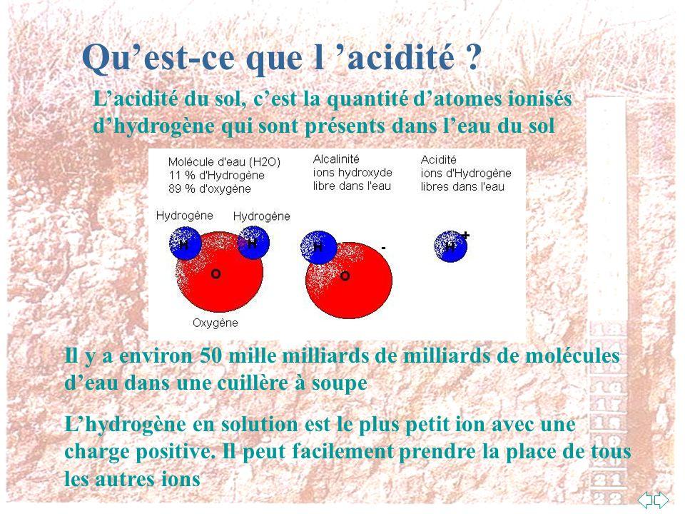 Qu'est-ce que l 'acidité