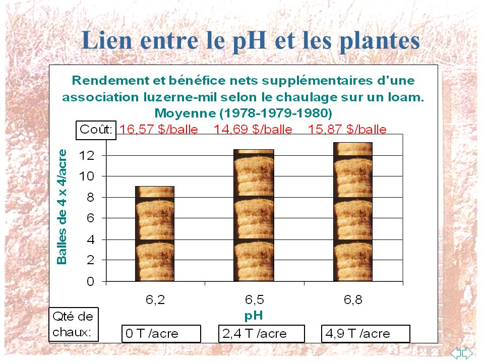 Lien entre le pH et les plantes