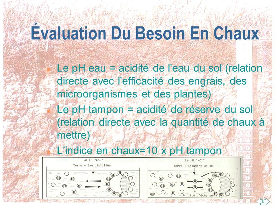 Évaluation Du Besoin En Chaux